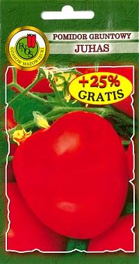 Pomidor Gruntowy Juhas