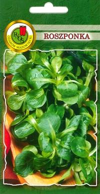 Roszponka warzywna