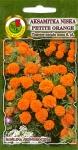 Aksamitka niska Petite Orange