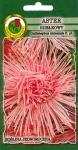 Aster igiełkowy Różowy Jubileusz