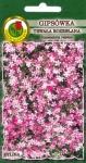 Gipsówka rozesłana różowa