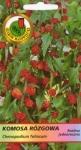 Komosa rózgowa czerwona
