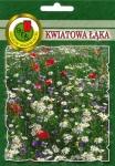 Kwiatowa łąka