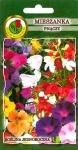Mieszanka roślin pnących