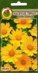 Nachyłek wielkokwiatowy Sunburst