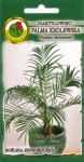 Palma królewska ( Daktylowiec kanaryjski )