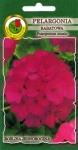 Pelargonia rabatowa fioletowa