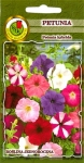 Petunia wielokwiatowa Rubin