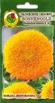 Słonecznik niski Sonnengold