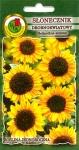 Słonecznik ozdobny drobnokwiatowy