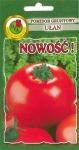 Pomidor Gruntowy Ułan