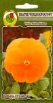 Wielkokwiatowy Pomarańczowy