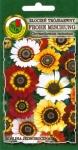 Złocień trójbarwny Frohe Mischung