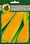 Kukurydza Złota Karłowa