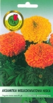 Aksamitka wielokwiatowa niska Crush Orange